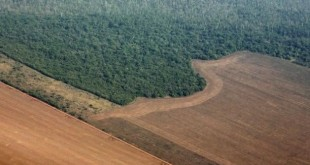desmatamento-da-amazonia-1448585838270_615x470
